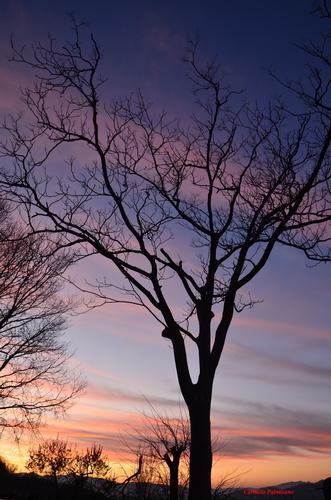 primo tramonto 2012 a Montefiore Conca  (1472 clic)