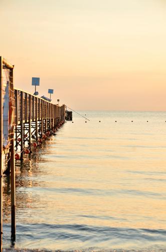 ALBA  - Rimini (682 clic)