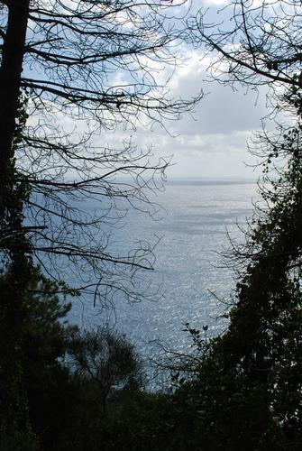 Finestra sul mare - Corniglia (2079 clic)