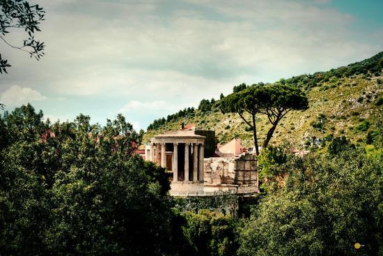 Tempio di Vesta - Tivoli (879 clic)