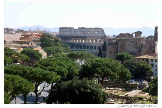 Colosseum per cartolina   - Roma (1626 clic)