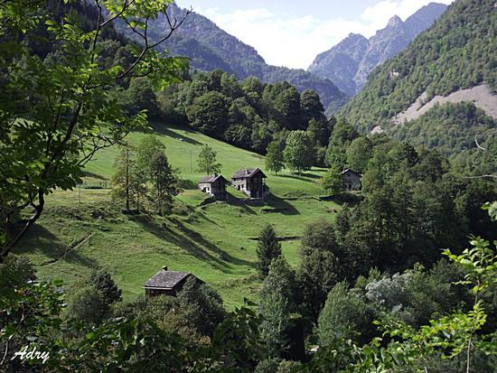 Alpeggio Valsesiano - Boccioleto (3551 clic)