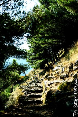 scala - Amalfi Coast - By Enrico Capuano -  (369 clic)