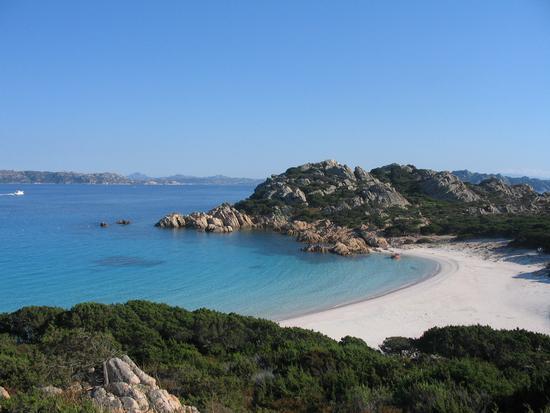 Spiaggia rosa - La maddalena (2554 clic)