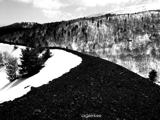 Parco dell' Etna monti Sartorius - Linguaglossa (2248 clic)