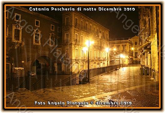 Le perle ai porci - Catania (2706 clic)