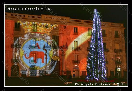 Catania: a Natale si può dare di più ma il Comune non lo sa (2771 clic)