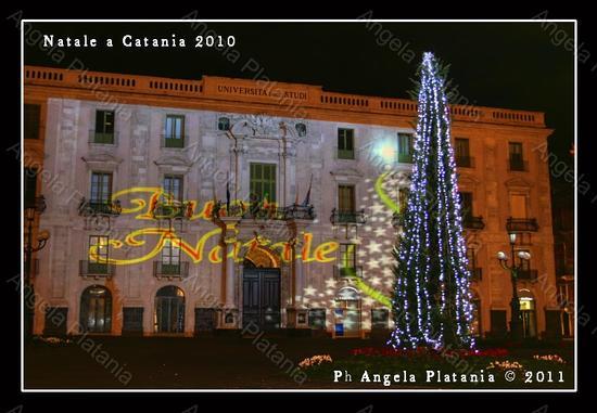 Catania: a Natale si può dare di più ma il Comune non lo sa (2485 clic)