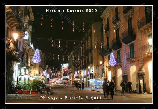 Catania: a Natale si può dare di più ma il Comune non lo sa (2778 clic)