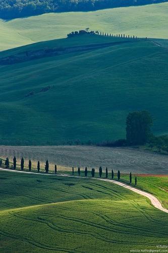 Toscana, Siena, Val d'Orcia - Pienza (2921 clic)