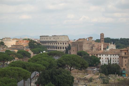 Il colosseo - Roma (2113 clic)