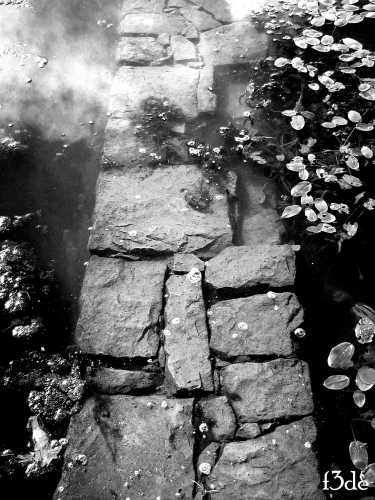 passaggio sommerso - Nebrodi (2812 clic)