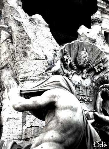 gabbiano urbano - Roma (2077 clic)