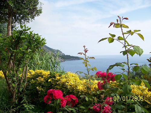 Maratea Acquafredda - Moliterno (3024 clic)