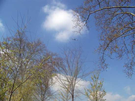 Il cielo sopra le mura di LUCCA (2005 clic)