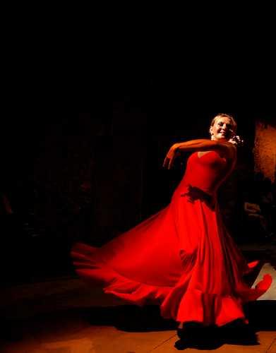 Flamenco - Rieti (2109 clic)