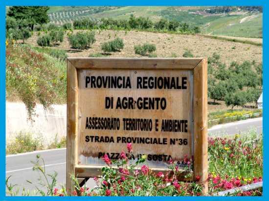 Strada Provinciale - Sant'anna (3693 clic)