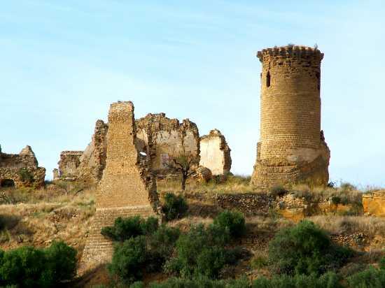 Castello di Poggio Diana - Ribera (5050 clic)