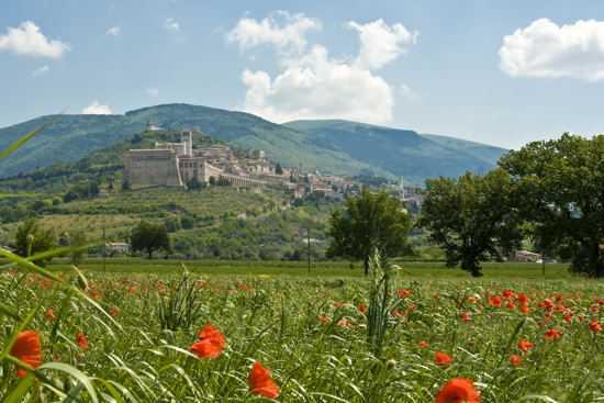 Assisi (1903 clic)