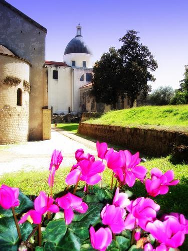 Basilica paleocristiana - Cimitile (680 clic)