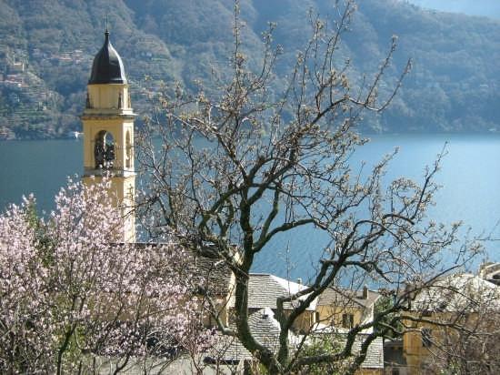 il campanile di San Giorgio - Laglio - (2995 clic)