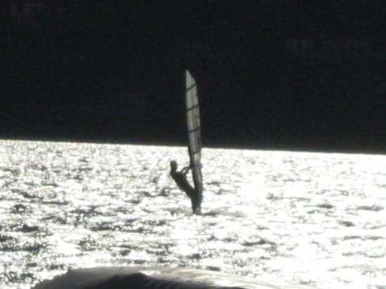 Il surfista di Laglio (2621 clic)