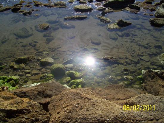 Natura - Ribera (2705 clic)