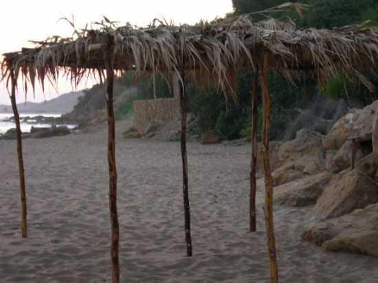 Pronta per la nuova estate - Ribera (3573 clic)