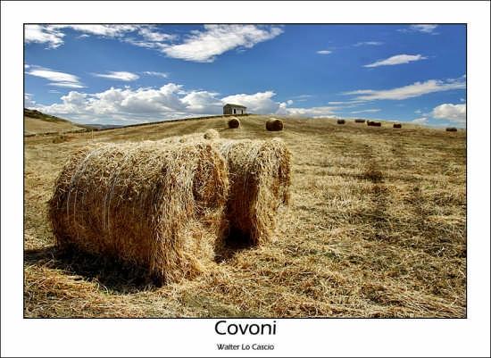 Covoni di fieno - Agira (8263 clic)