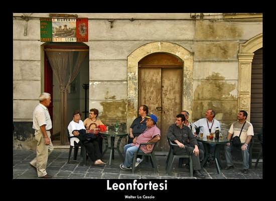Leonfortesi (12764 clic)