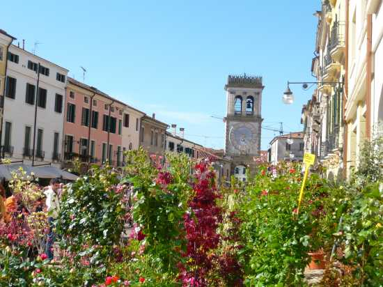 ESTE(Padova) Via Matteotti e Torre dell'Orologio  (3890 clic)