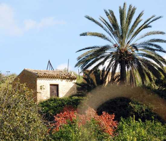 Casa in contrada Terremoto - Ribera (3245 clic)