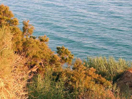 Spiaggia di Borgo Bonsignore - BORGO BONSIGNORE - inserita il 17-Nov-09