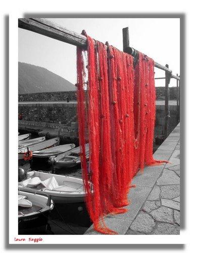 Camogli  -  reti ad asciugare (3634 clic)