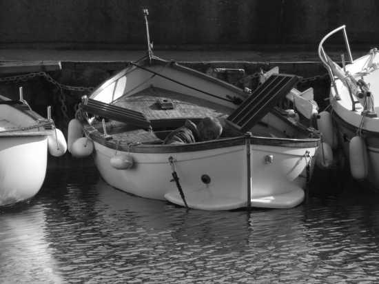 pescatore - Livorno (2129 clic)