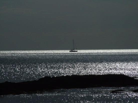 mare - Livorno (2112 clic)