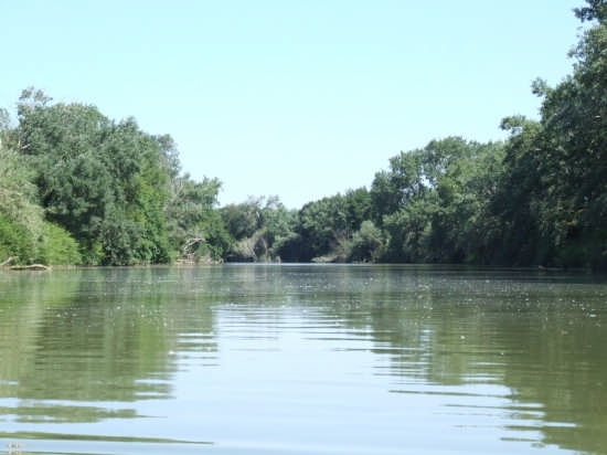 fiume  - Ombrone (3072 clic)