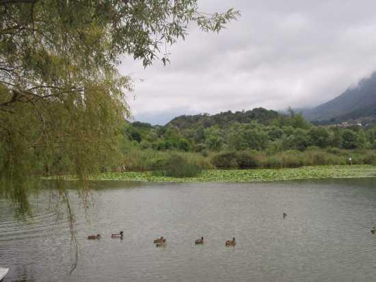 lago bianco di menaggio - Como (1484 clic)