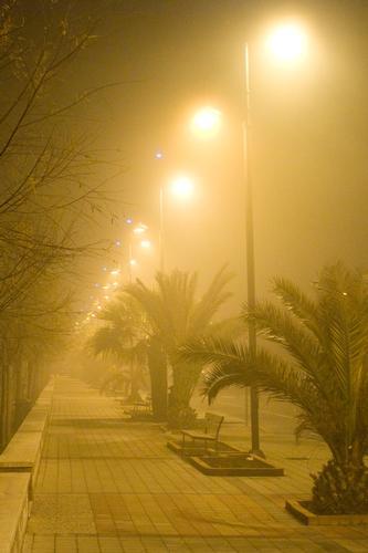 Avvolti nella nebbia - Fossacesia (1843 clic)