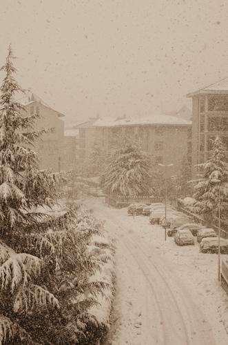 Neve del 10-02-12 - Ortona (2106 clic)