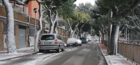 Nevicata di febbraio 2009 - Ortona (1434 clic)