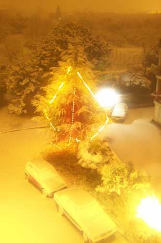 Nevicata dicembre 2007 - Ortona (1311 clic)