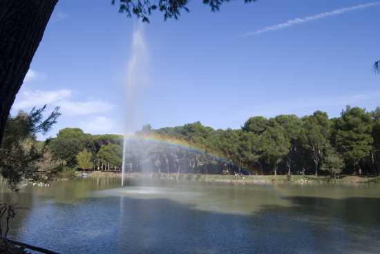 Fontana nel laghetto - Arcobaleno - Pescara (2052 clic)