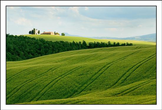 Colli senesi - San quirico d'orcia (4054 clic)