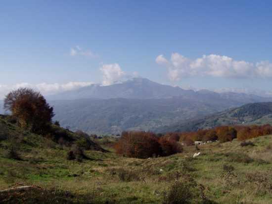 Monte Sirino - Castelsaraceno (2511 clic)