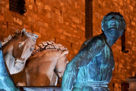 fontana del Nettuno - Firenze (481 clic)