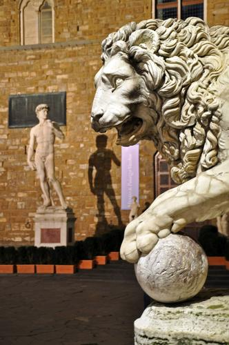 l'ombra del David è in pericolo! - Firenze (603 clic)