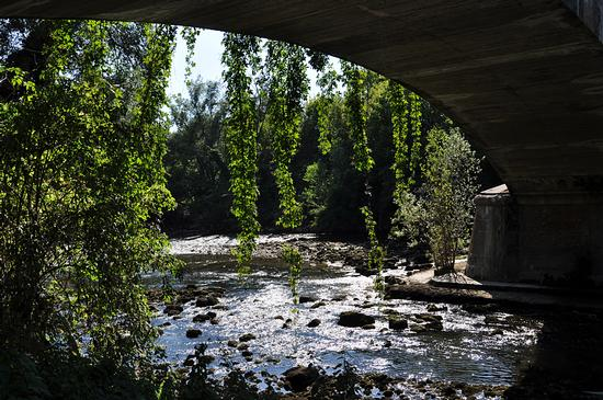 under the bridge. - Crema (377 clic)
