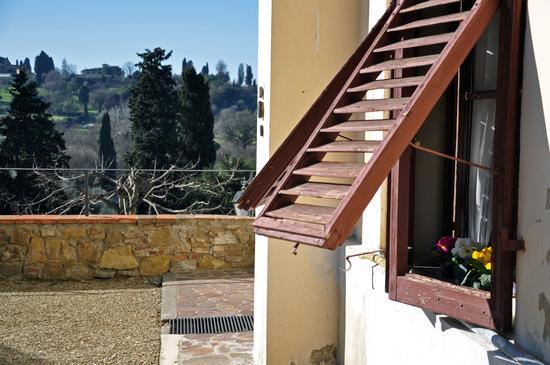 la finetra sul cortile - Firenze (532 clic)