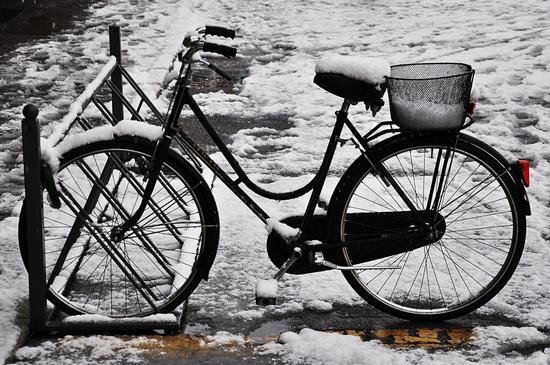 coperta di neve. - Crema (643 clic)